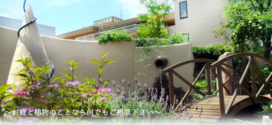 石川県/野々市市/金沢市/白山市の造園工事、新築外構、エクステリア、観葉植物のリース、販売を行っています。